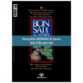 RACCOLTA BONSAI & NEWS DAL 81 AL 90