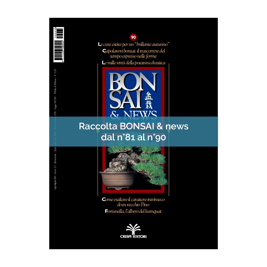 RACCOLTA BONSAI & NEWS DAL 81 AL 90