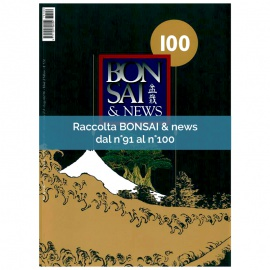 RACCOLTA BONSAI & NEWS DAL 91 AL 100