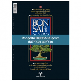 RACCOLTA BONSAI & NEWS DAL 101 AL 110