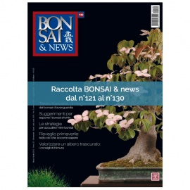 RACCOLTA BONSAI & NEWS DAL 121 AL 130