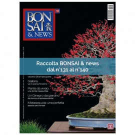 RACCOLTA BONSAI & NEWS DAL 131 AL 140