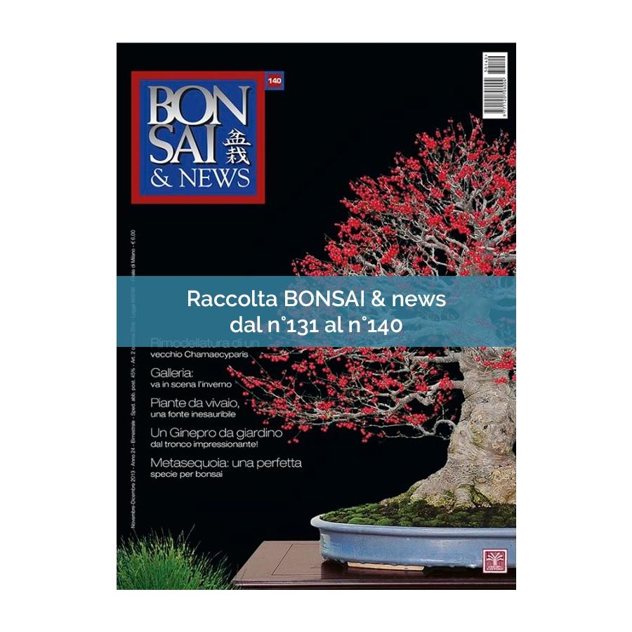RACCOLTA BONSAI & NEWS DAL 131 AL 140