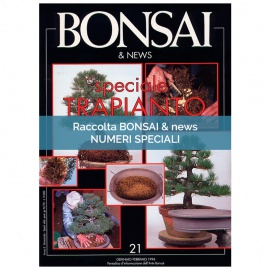 RACCOLTA SPECIALI BONSAI & NEWS