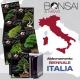ABBONAMENTO BIENNALE  ITALIA - BONSAI & NEWS