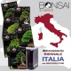 ABBONAMENTO BIENNALE ITALIA CON RACCOGLITORE - BONSAI & NEWS