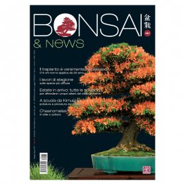BONSAI & NEWS 161 - MAG-GIU 2017