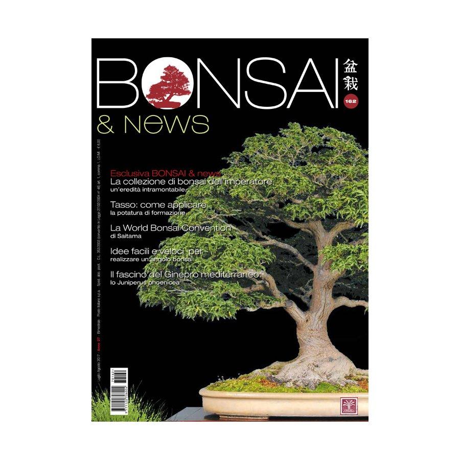 BONSAI & NEWS 162 - LUG-AGO 2017