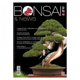 BONSAI & NEWS 163 - SETT-OTT 2017