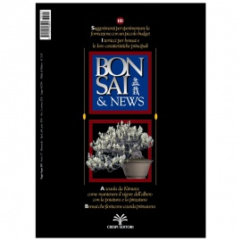 BONSAI & NEWS 101 - MAG-GIU 2007
