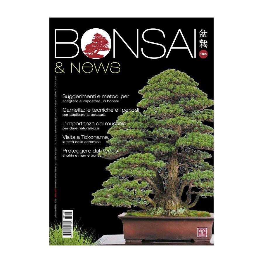 BONSAI & NEWS 164 - NOV-DIC 2017