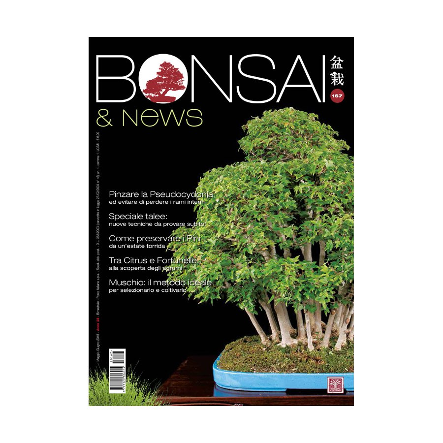BONSAI & NEWS 167 - MAG-GIU 2018