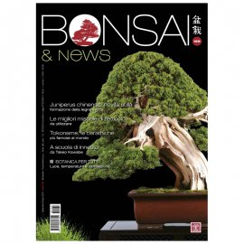 BONSAI & NEWS 169 -  SETT-OTT 2018