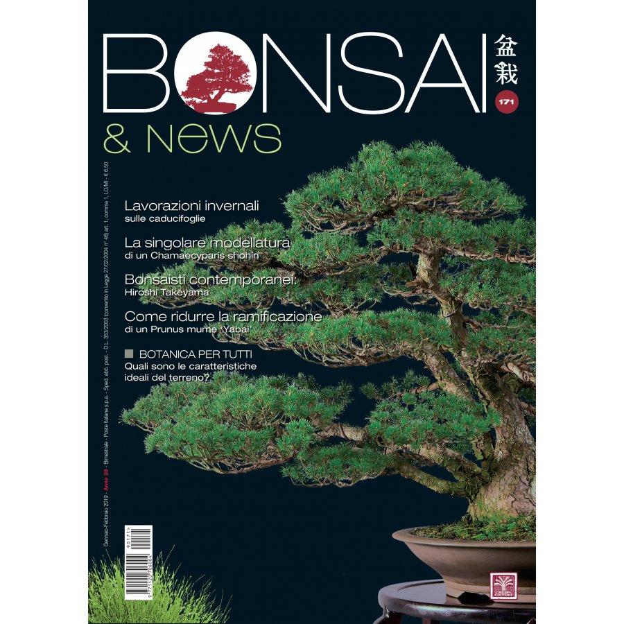 BONSAI & NEWS 171 -  GENN-FEBB 2019