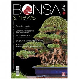 BONSAI & NEWS 173 -  MAG-GIU 2019
