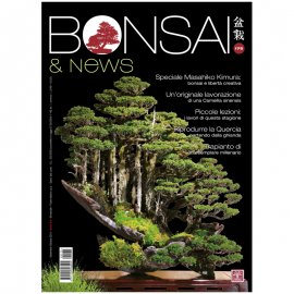 BONSAI & NEWS 175 -  SETT-OTT 2019