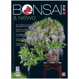 BONSAI & NEWS 179 - MAG-GIU 2020