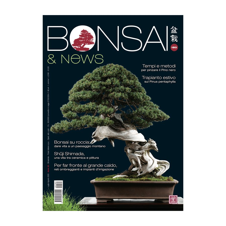 BONSAI & NEWS 180 -  LUG-AGO 2020
