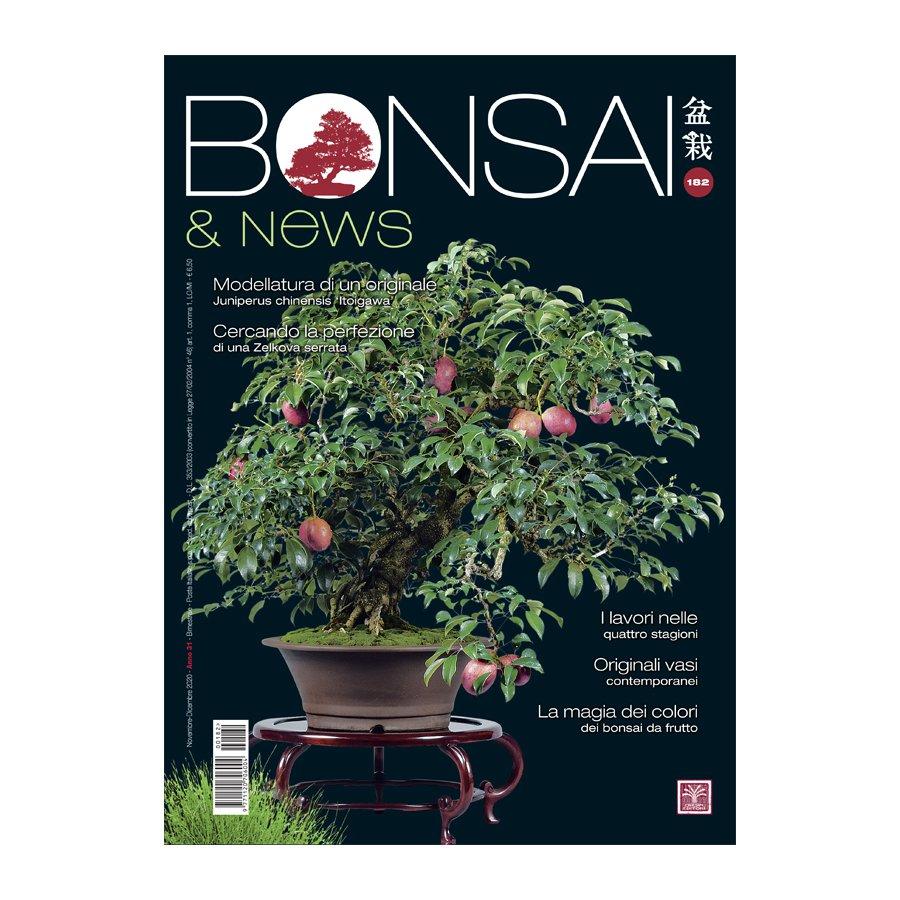 BONSAI & NEWS 182 -  NOV-DIC 2020