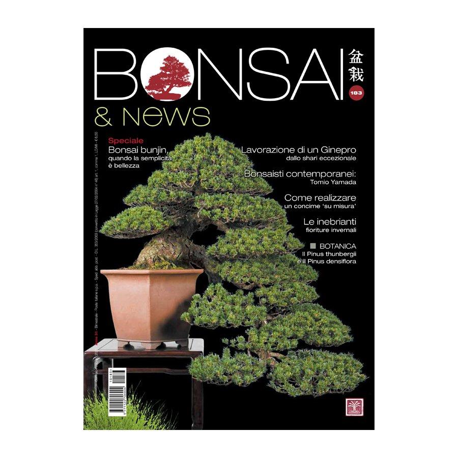 BONSAI & NEWS 183 -  GENN-FEBB 2021