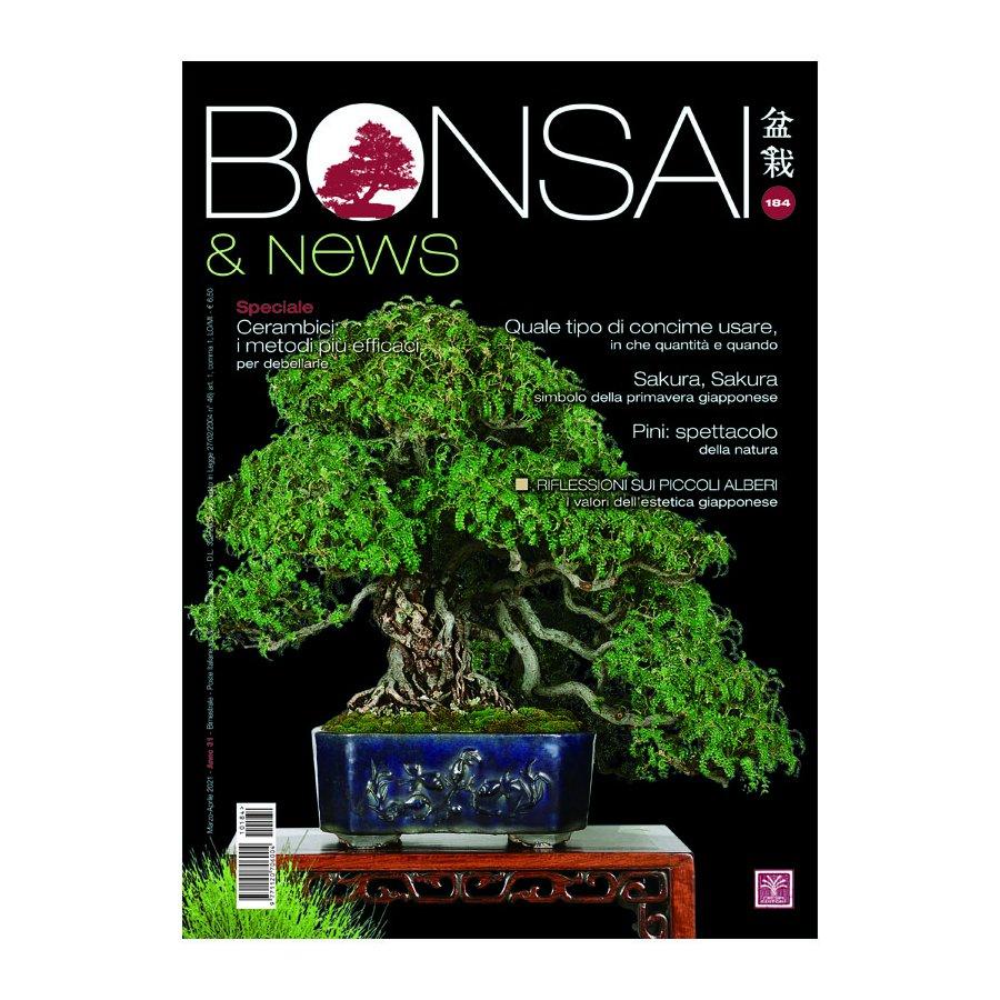 BONSAI & NEWS 184 -  MAR-APR 2021