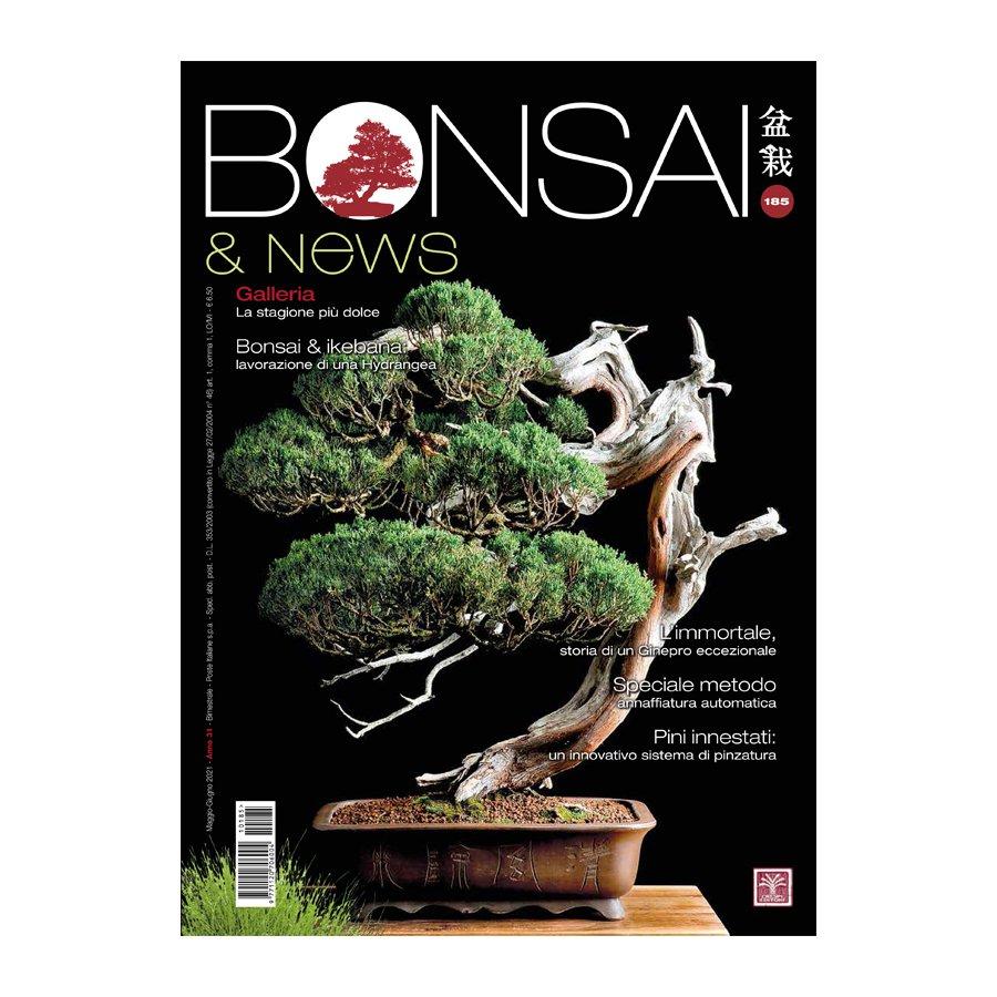 BONSAI & NEWS 185 -  MAG-GIU 2021