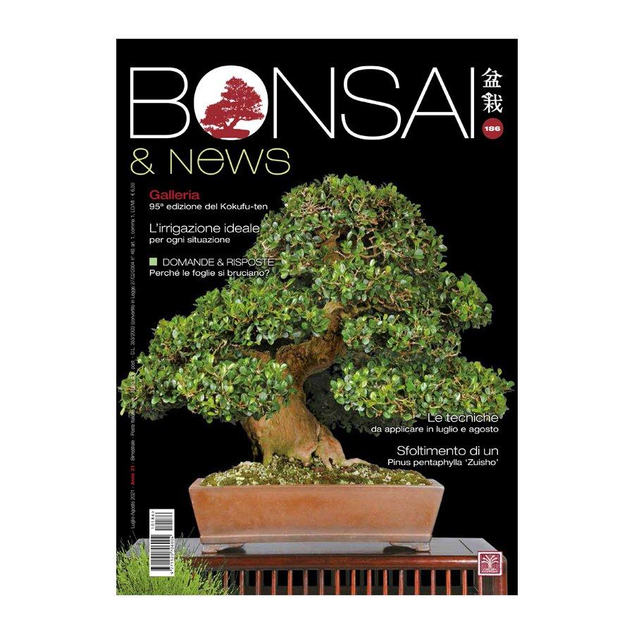 BONSAI & NEWS 186 -  LUG-AGO 2021