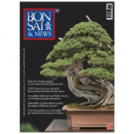 BONSAI & NEWS 115 - SET-OTT 2009