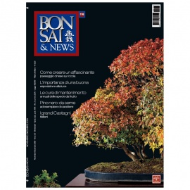 BONSAI & NEWS 116 - NOV-DIC 2009