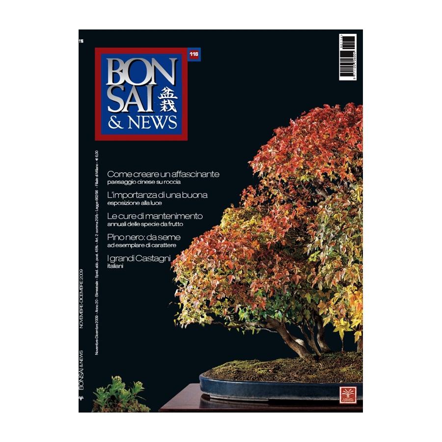 BONSAI & NEWS 116 - NOV-DIC 2009