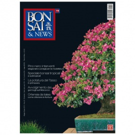BONSAI & NEWS 119 - MAG-GIU 2010