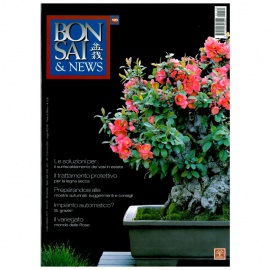 BONSAI & NEWS 120 - LUG-AGO 2010