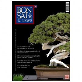 BONSAI & NEWS 121 - SET-OTT 2010