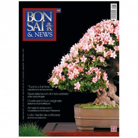 BONSAI & NEWS 137 - MAG-GIU 2013