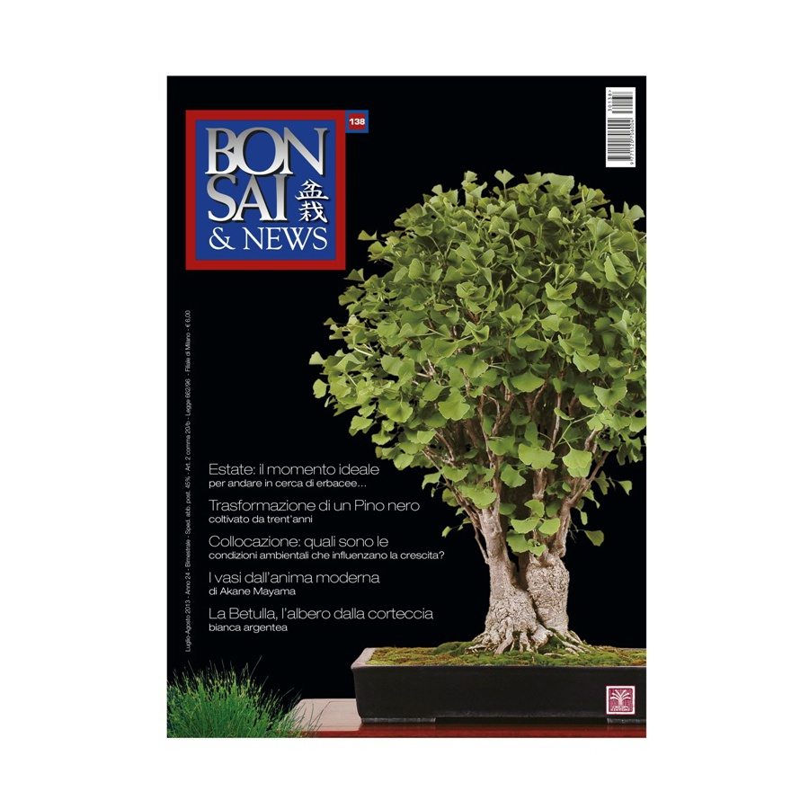 BONSAI & NEWS 138 - LUG-AGO 2013