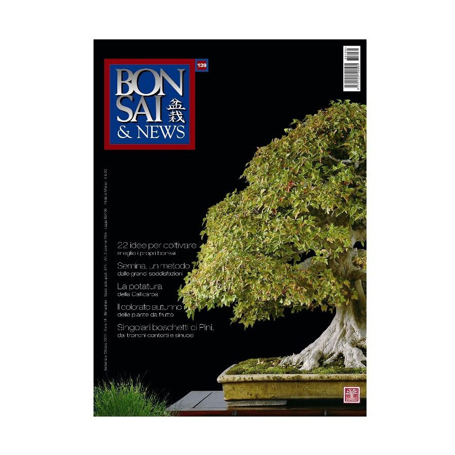 BONSAI & NEWS 139 - SET-OTT 2013