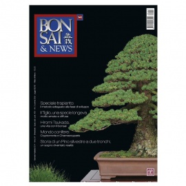 BONSAI & NEWS 141 - GEN-FEB 2014