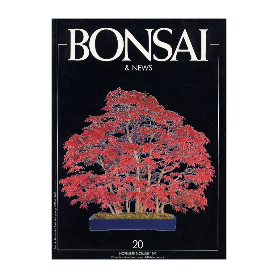 BONSAI & NEWS 20 - NOV-DIC 1993